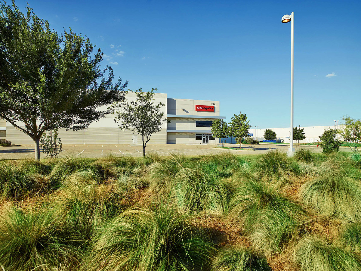 DFW Trade Center Landscape Project